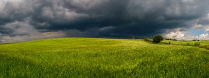 Summer thunderstorm in a wheat field royalty free stock images