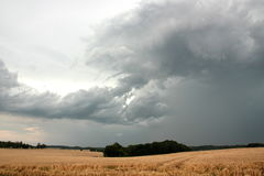 Summer thunderstorm Stock Photography