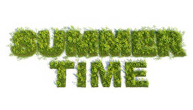 Summer time 3d grass test Royalty Free Stock Photo
