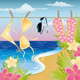 Summer time background Royalty Free Stock Photos