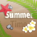 Summer Time Background with flowers and stones Stock Images