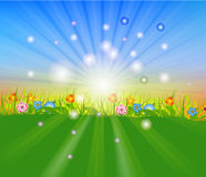 Summer time background with Hot sun lights vector illustration Stock Photography