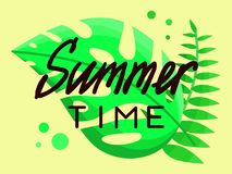 Summer time. On a background of leaves and yellow stock illustration
