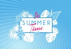 Summer time colorful banner with tropical flowers and leafs. Vector art Stock Image