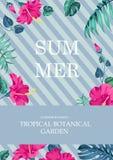 Summer time concept. Stock Photos