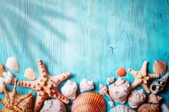 Summer time concept with seashells and starfish on blue wooden boards. Rest on the beach. Background with copy space. Summer time concept with seashells and royalty free stock photo