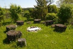 Summer time garden flowers decoration plants home living. Design nature stock image