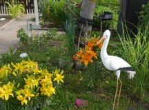 Summer time garden flowers decoration plants home living. Design nature stock photos