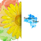 Summer time greeting card, watercolor sunflower Stock Images