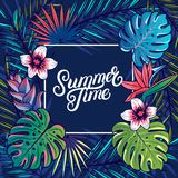 Summer Time hand written lettering text Royalty Free Stock Photos