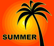 Summer Time Indicates Season Positive And Warmth Royalty Free Stock Image