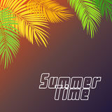 Summer Time Palm Leaf Vector Background Illustration Royalty Free Stock Photography