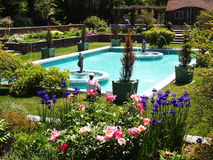 Summer time in park. Picture of the park/garden  with pool in summer Stock Photography