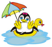 Summer time for penguin girl Stock Photo