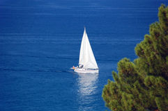 Summer time sailing Royalty Free Stock Image