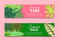 Summer time set of banners, flyers vector illustration. Tropical leaves. amazing palms. Jungle leaves, split leaf vector illustration