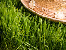 Summer Time - Straw Hat in The Grass Stock Photo
