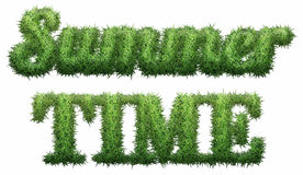 Summer Time text made of grass. Isolated on a black background. 3D illustration Royalty Free Illustration