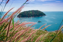 Summer time in Thailand Royalty Free Stock Images