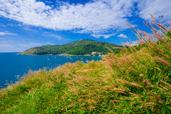 Summer time in Thailand Stock Photos
