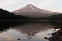 Summer Time Trillium Lake Timberline Mount Hood Cascade Range Oregon. Some snow still remains on the high elevation of Mt Hood seen here from Trillium Lake Royalty Free Stock Photography