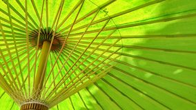 Summer time. Under green umbrella with tree shadow in summer Stock Photography