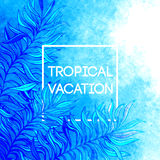 Summer time. Vector illustration of tropical palm Royalty Free Stock Photo