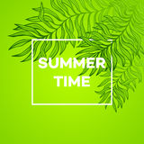 Summer time. Vector illustration of tropical palm Royalty Free Stock Image