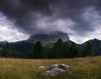 Summer in Tirol Royalty Free Stock Photo