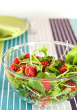Summer tomato salad Royalty Free Stock Photo