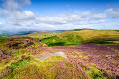 Higger Tor in Summer Royalty Free Stock Photo