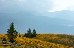 Summer Transalpina road (Carpathians,  Romania). Stock Photography