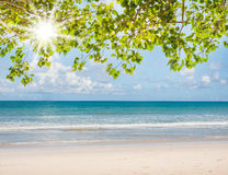 Summer and travel concept Royalty Free Stock Image