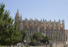Summer travel in Spain. Island Majorca. Stock Image