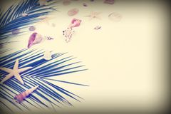 Summer travel top view background. tropical palm leaves branches, stars and seashells on vintage toned blur background. With empty space for text. vacation stock photo
