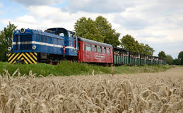 Summer traveling by narrow-gauge railway train Royalty Free Stock Images