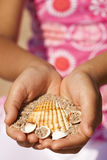 Summer treasures. A girl holding sea shells at the beach Royalty Free Stock Photos