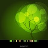 Summer tree. Card with stylized summer tree Royalty Free Stock Photography