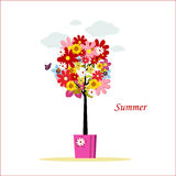 Summer tree Royalty Free Stock Photos