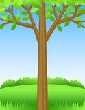 Summer Tree Background/eps royalty free stock photo