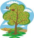 Summer tree - four seasons Stock Photography