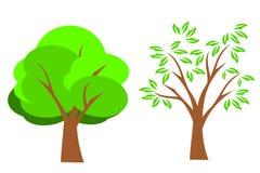 Summer Tree. Green tree set in summer Stock Illustration