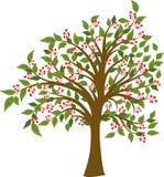 Summer tree, vector Royalty Free Stock Image