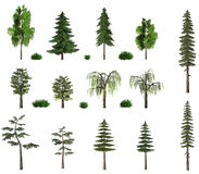 Free Summer Trees Billboard Collection On White Royalty Free Stock Photography - 764927