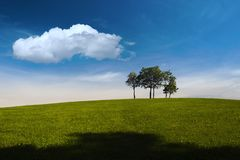 Summer, trees, hill and blue sky. A small group of young trees are standing on the top of a hill. There is a clear blue sky above and a big white cloud Stock Photos