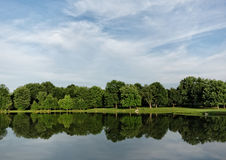 Summer Trees Reflection Royalty Free Stock Image