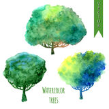 Summer trees. Watercolor vector set of trees Royalty Free Stock Images