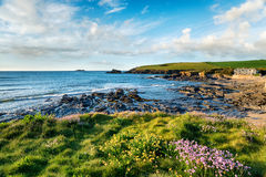 Summer at Trevone in Cornwall stock photography