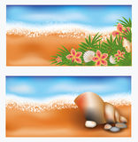 Summer tropic banners with flowers and seashell Stock Photos