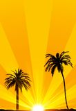 Summer tropical background. May be used as background for vacation or traveling concept Royalty Free Stock Image